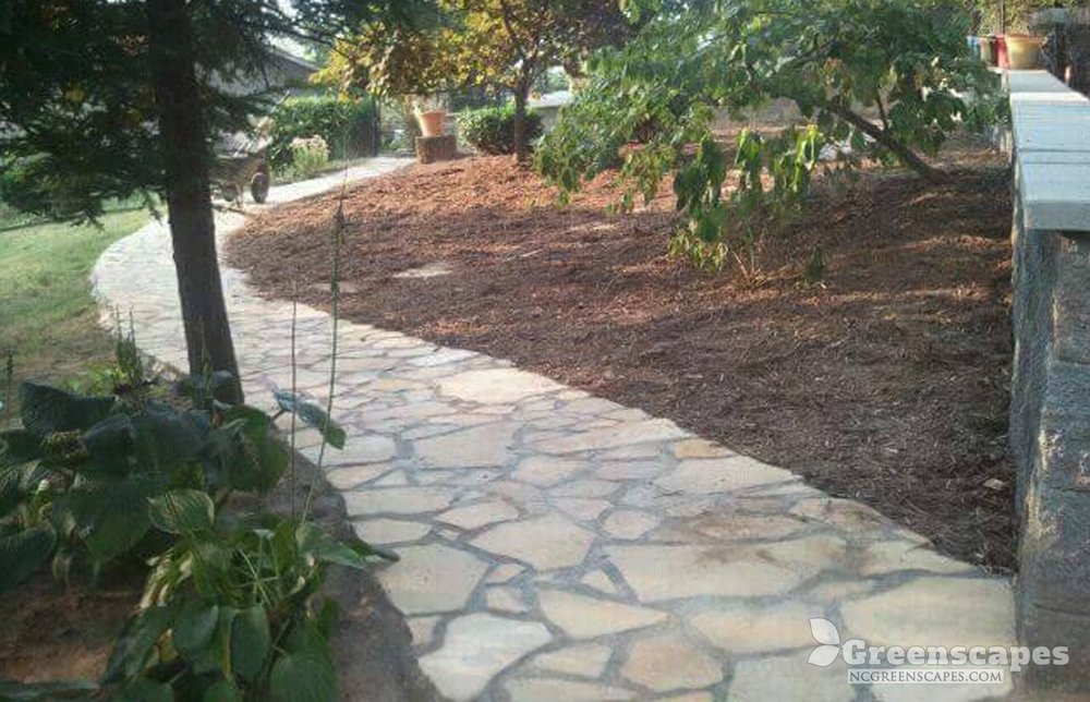 Beautiful stone veneer pathway between trees and plants