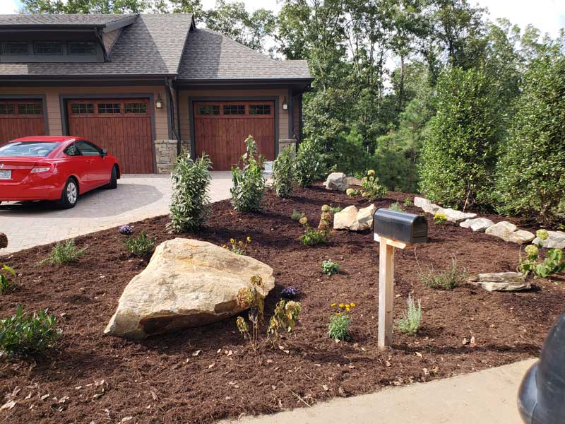front yard slope with newly planted landscaping and mulch