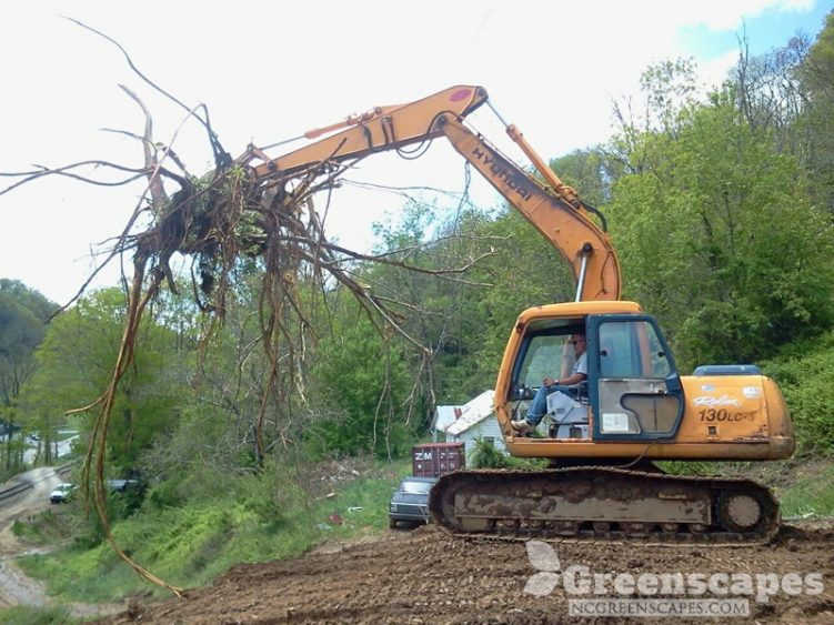 Hyndai excavator removing moving tree roots off mountain