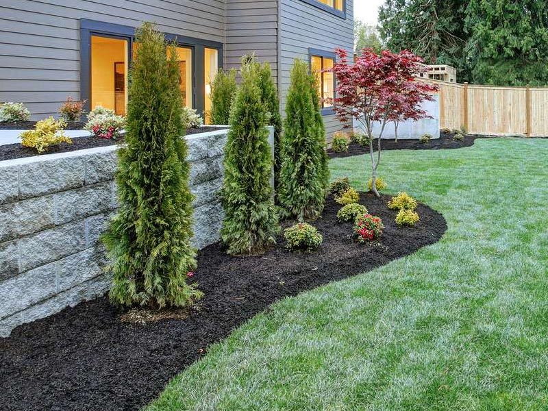 landscape design newly installed lawn trees plants and sod